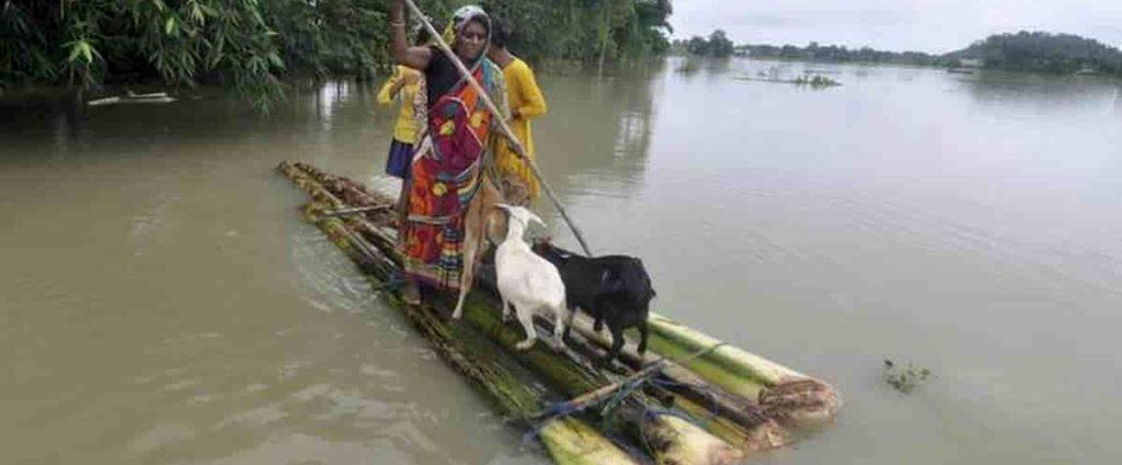 heavy rain, Bihar