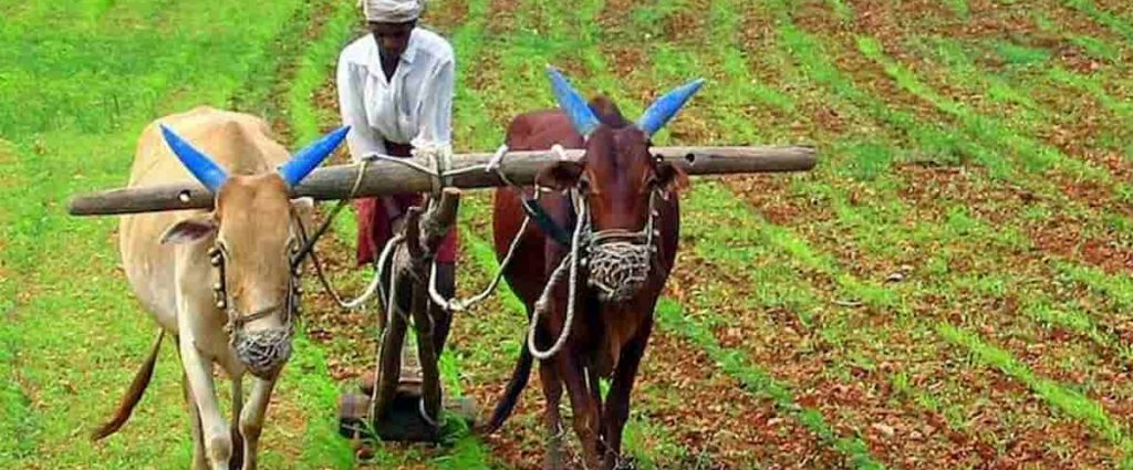 Agriculture Bill