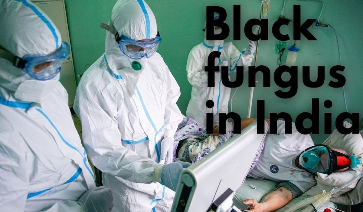 8848 Cases of Black Fungus in India